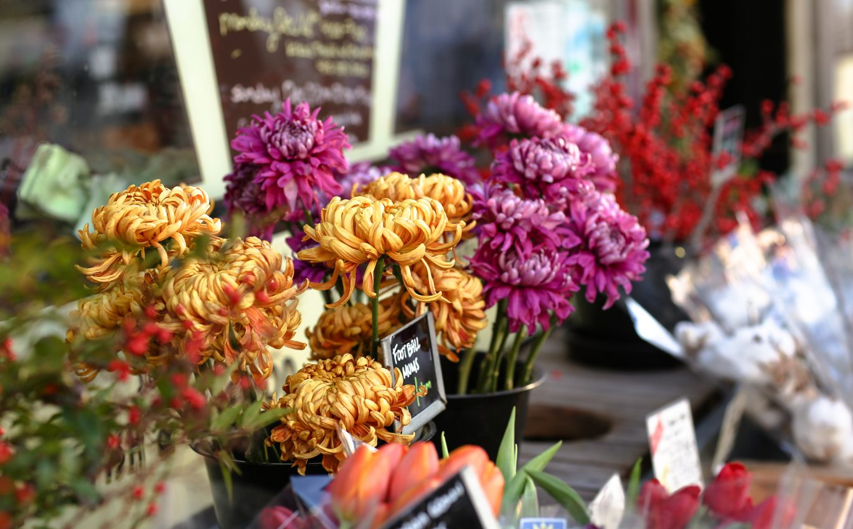 Apakah Bisa Mengirimkan Bunga Hari Ini?